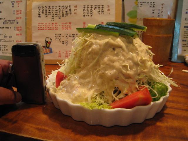 野菜サラダ 横から