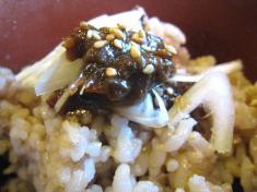 八丁味噌の発芽玄米ご飯 アップ