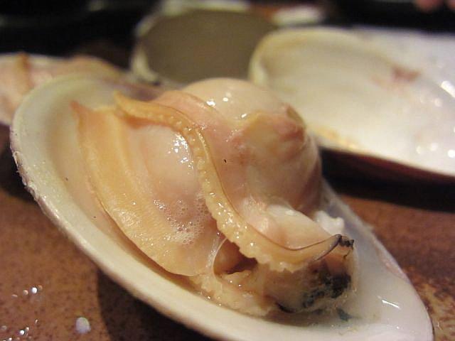 三重県桑名産 蛤10年物
