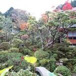 茨木市の山奥で築200年の民家で食べる隠れ家ランチ!