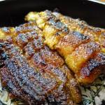 高槻 ランチ 『旬菜旬魚 きくの』 7月1日~8月31日まで期間限定の鰻ランチが始まりました。
