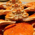 八軒屋浜船着場『KPG RIVER CRUISE (大阪屋形船)』2019年1月4日(金)~3月15日(金)までの蟹食べ放題を堪能してきました。